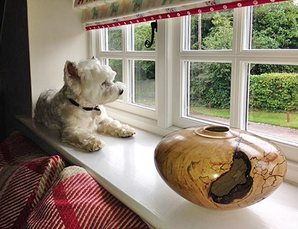 Spalted beech vase, photographed by our client, in their home, along with their very cute dog!